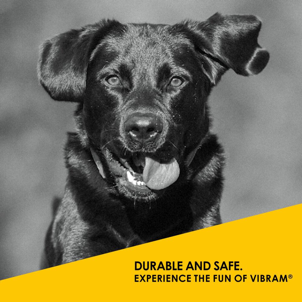 Vibram K Dog Toys