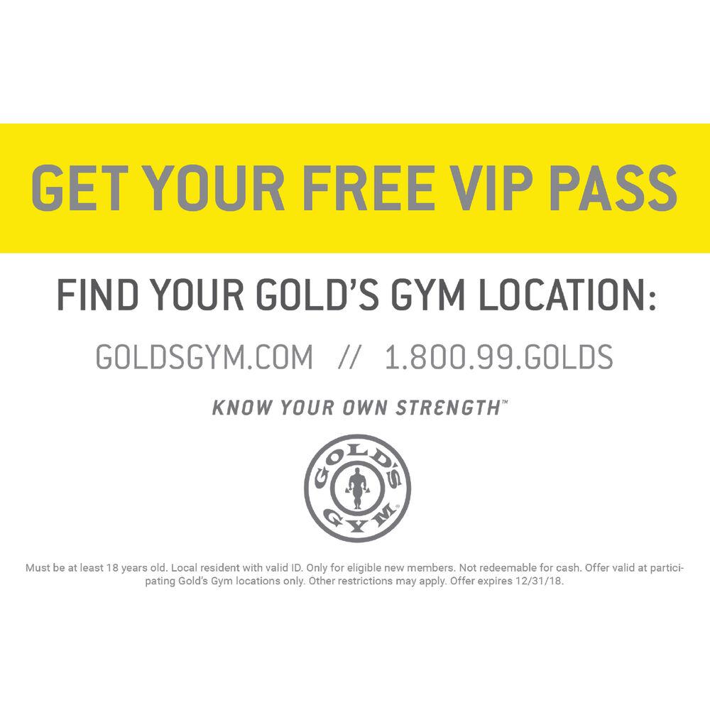 ... V-Train Gold's Gym Edition ...